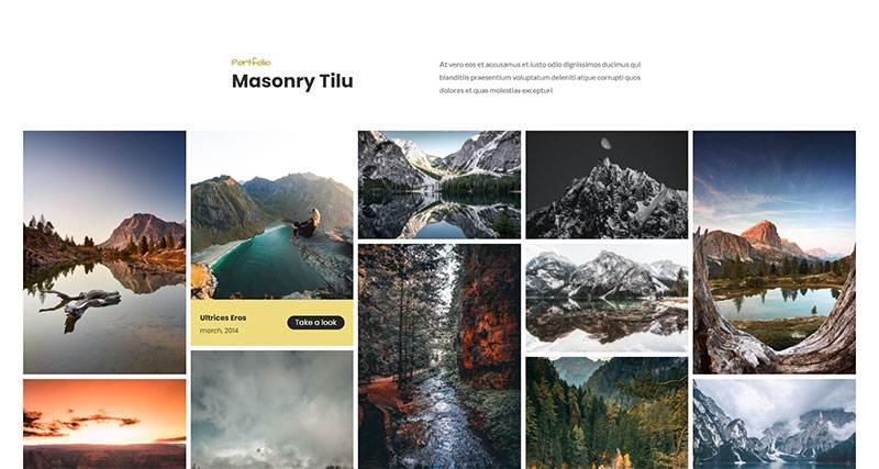 Masonry Tilu